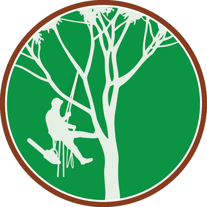 Paul The Tree Climber Icon | Paul The Tree Climber